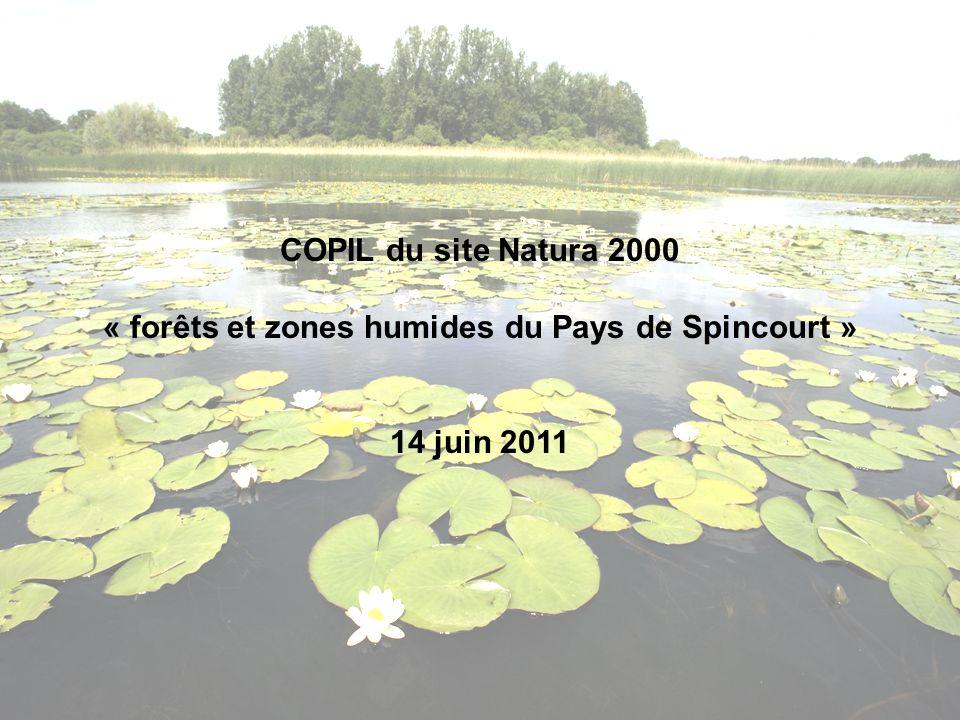 « forêts et zones humides du Pays de Spincourt »