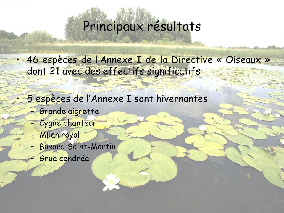 Principaux résultats 46 espèces de l'Annexe I de la Directive « Oiseaux » dont 21 avec des effectifs significatifs.