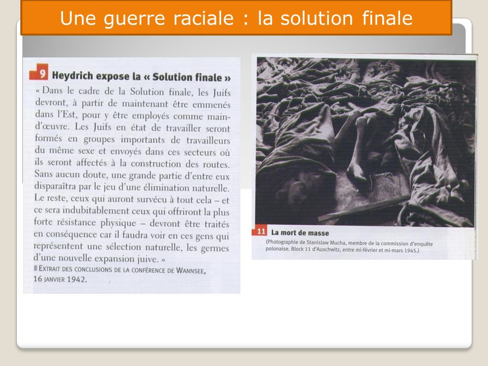 Une guerre raciale : la solution finale