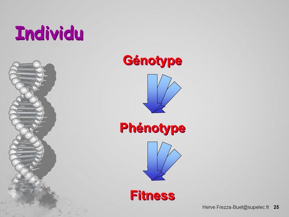Individu Génotype Phénotype Fitness