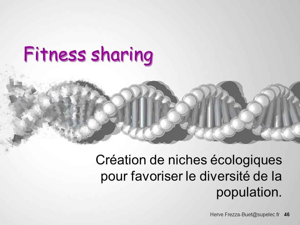 Fitness sharing Création de niches écologiques pour favoriser le diversité de la population.