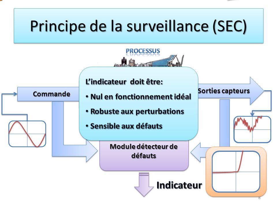 Principe de la surveillance (SEC)