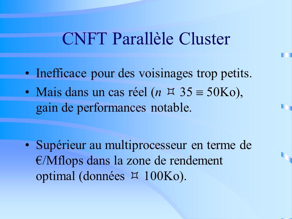 CNFT Parallèle Cluster