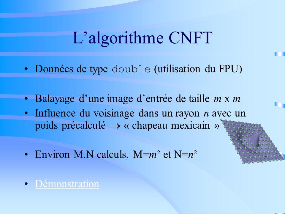 L'algorithme CNFT Données de type double (utilisation du FPU)