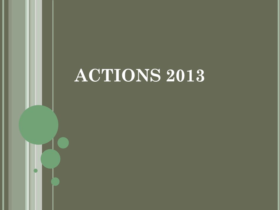 ACTIONS 2013