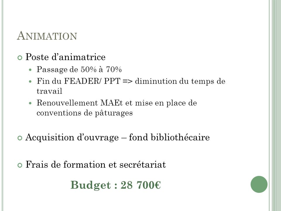 Animation Budget : 28 700€ Poste d'animatrice