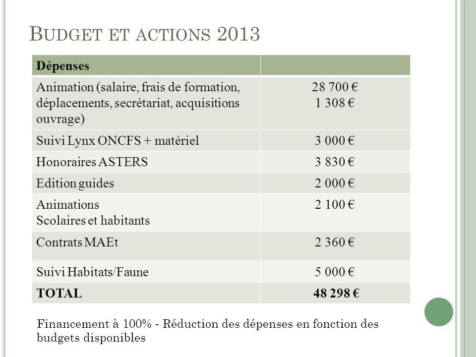 Budget et actions 2013 Dépenses