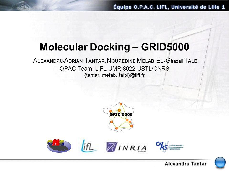 Molecular Docking – GRID5000 ALEXANDRU-ADRIAN TANTAR, NOUREDINE MELAB, EL- Ghazali TALBI OPAC Team, LIFL UMR 8022 USTL/CNRS {tantar, melab, talbi}@lifl.fr