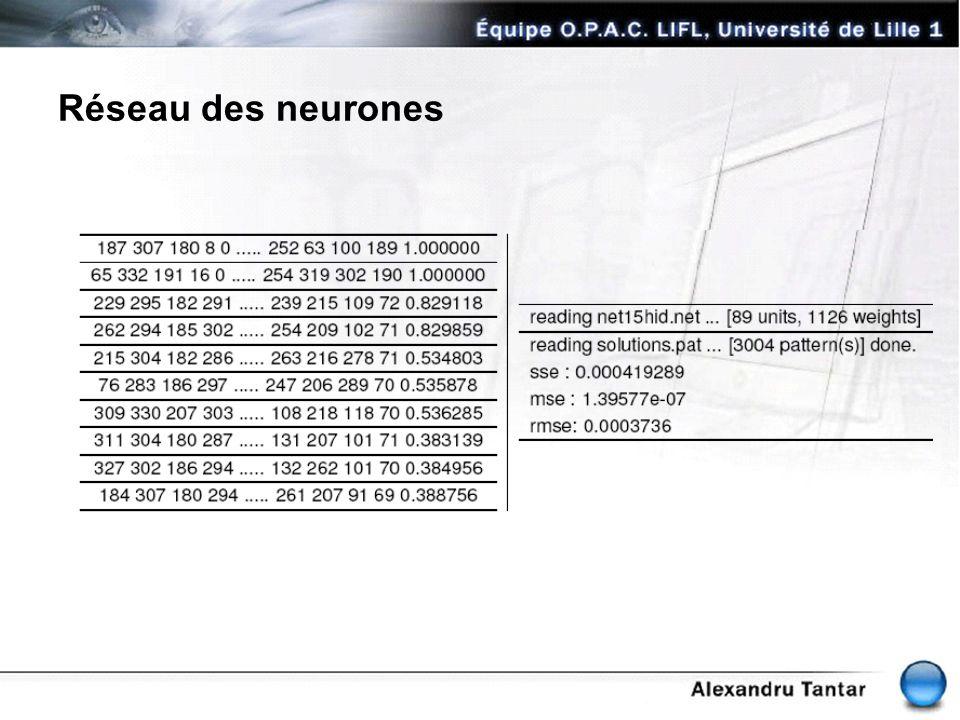 Réseau des neurones