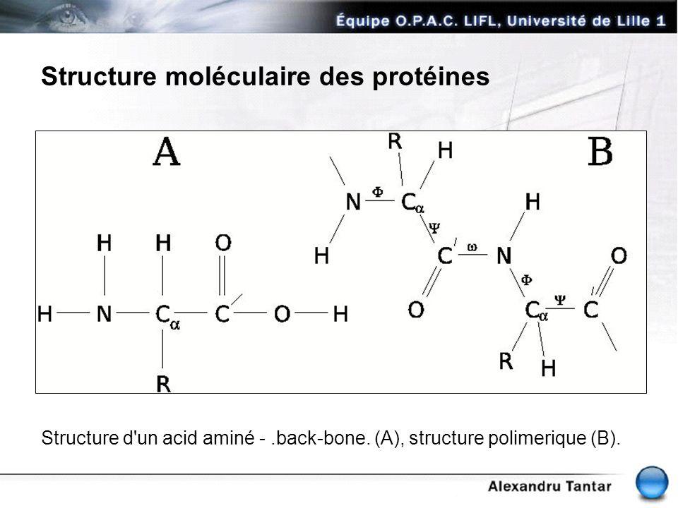 Structure moléculaire des protéines