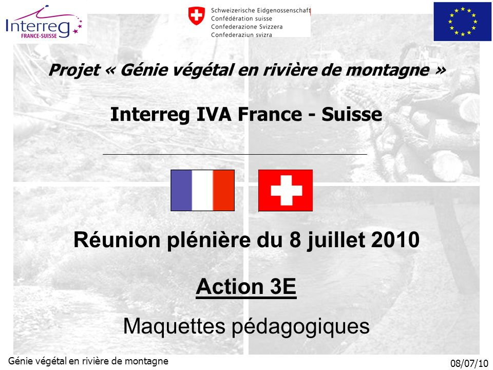 Réunion plénière du 8 juillet 2010