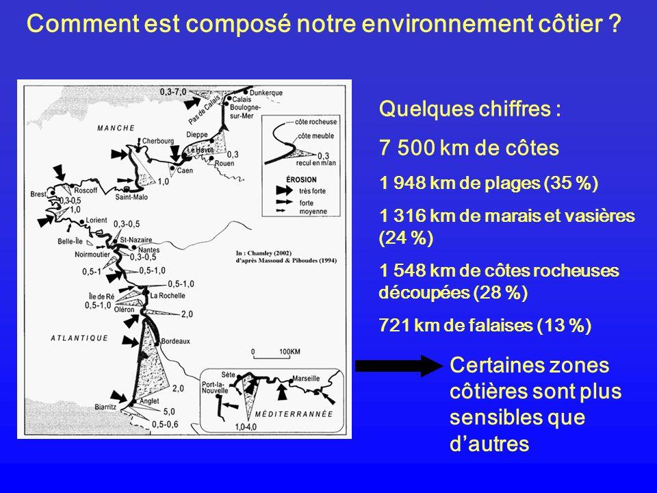 Comment est composé notre environnement côtier