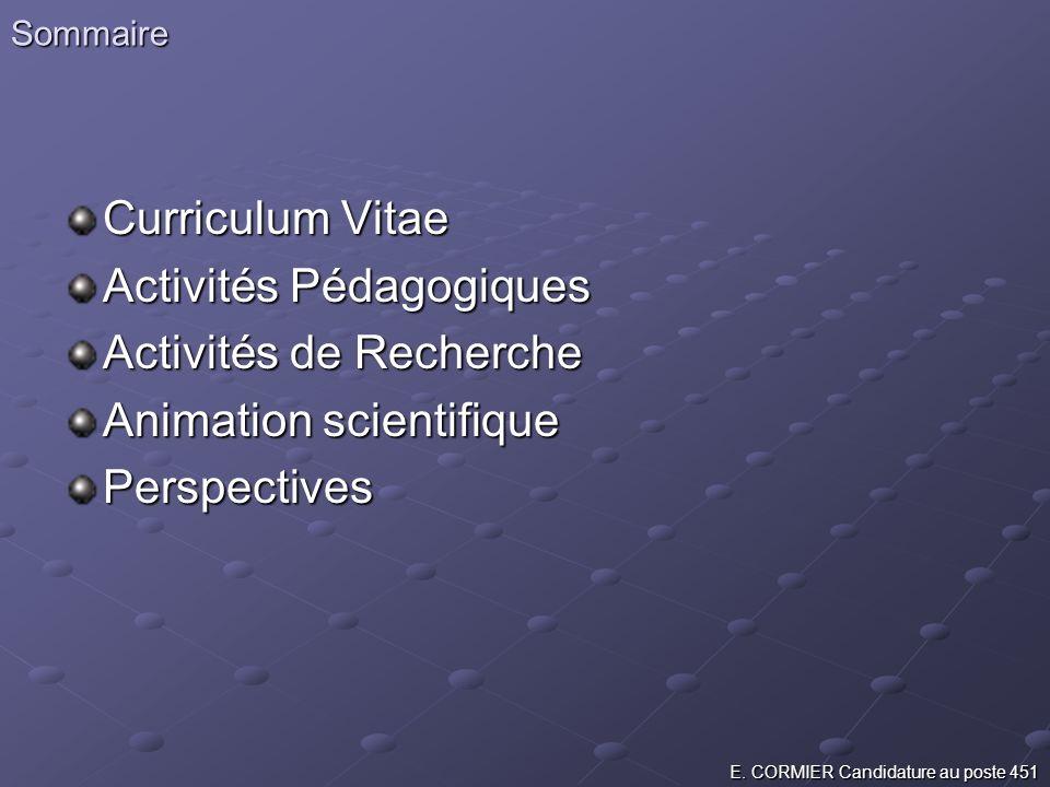 Activités Pédagogiques Activités de Recherche Animation scientifique