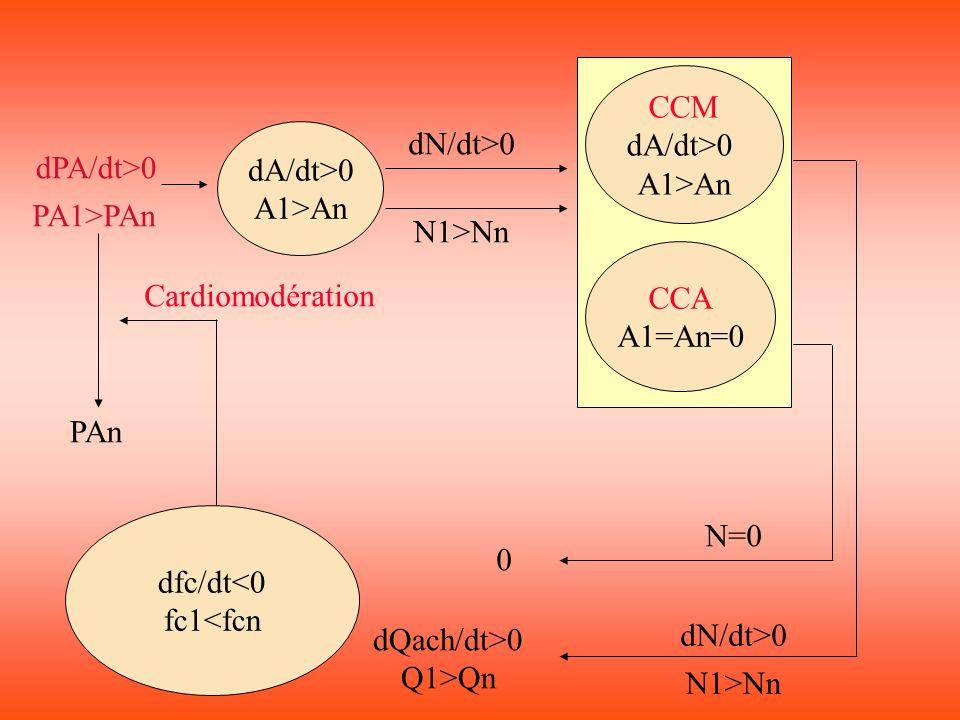 CCM dA/dt>0. A1>An. dA/dt>0. A1>An. dN/dt>0. dPA/dt>0. PA1>PAn. N1>Nn. CCA. A1=An=0. Cardiomodération.