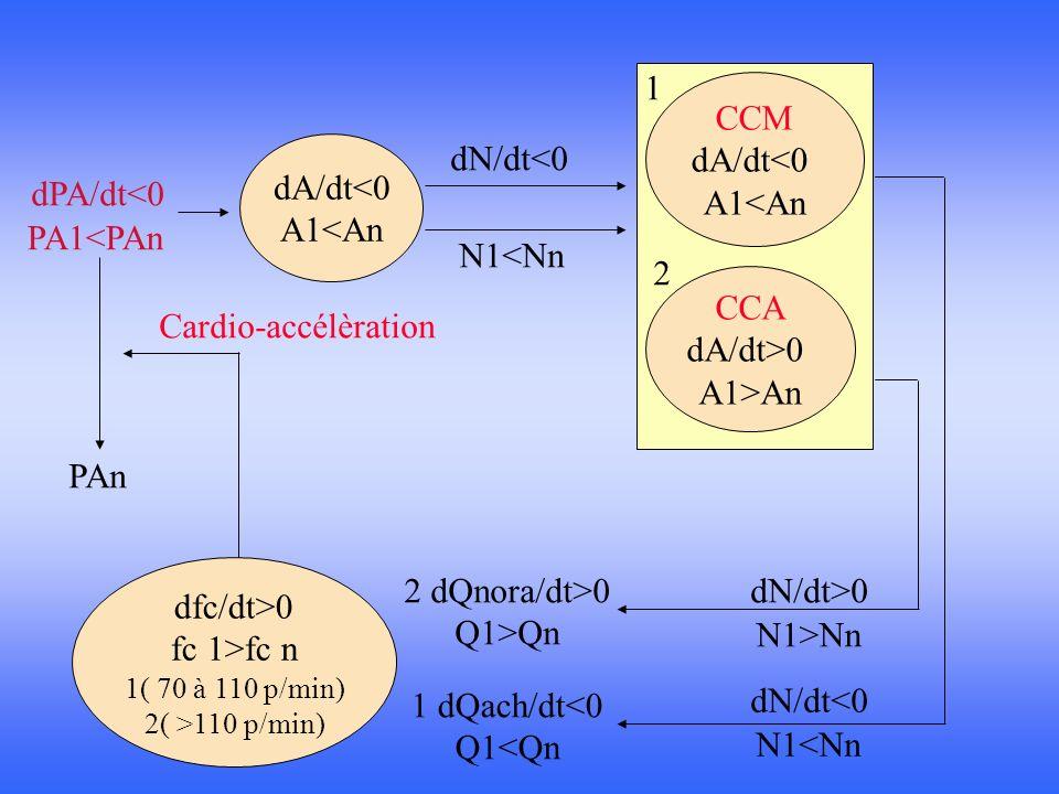 1 CCM dA/dt<0 A1<An dA/dt<0 A1<An dN/dt<0 dPA/dt<0