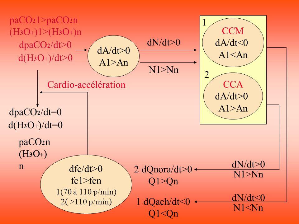 paCO21>paCO2n 1 (H3O+)1>(H3O+)n CCM dA/dt<0 A1<An