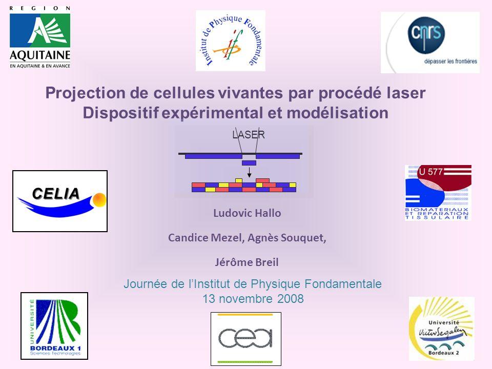 Projection de cellules vivantes par procédé laser