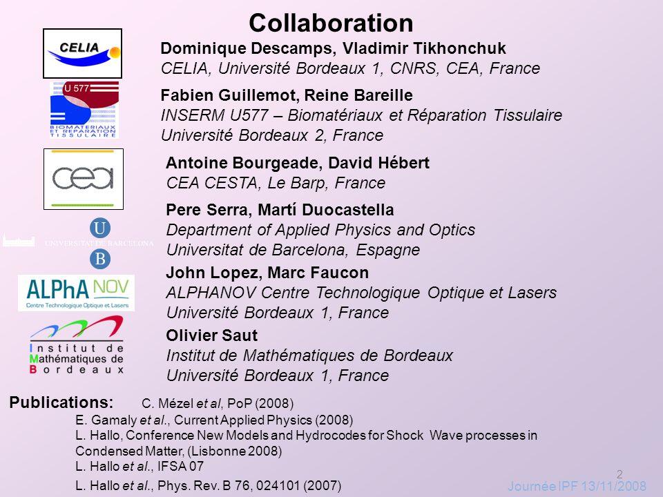 Collaboration Dominique Descamps, Vladimir Tikhonchuk