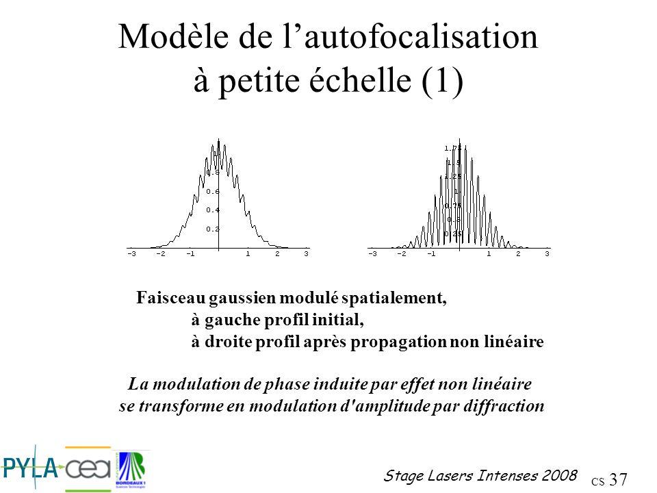 Modèle de l'autofocalisation à petite échelle (1)
