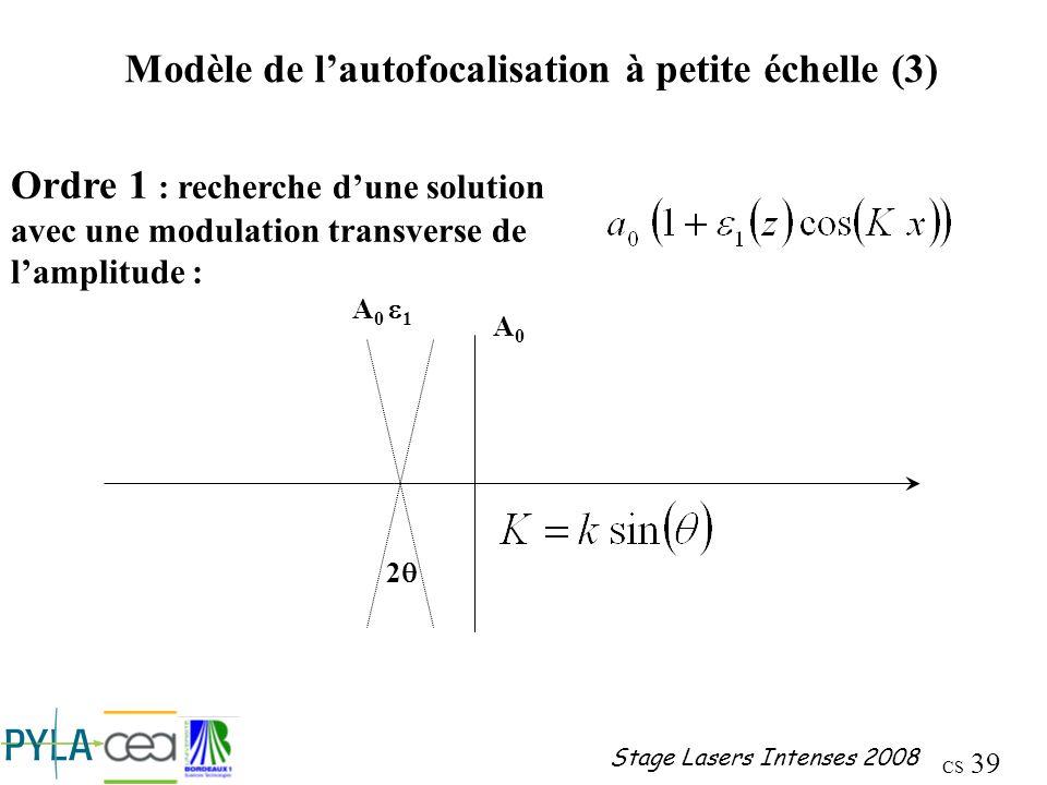 Modèle de l'autofocalisation à petite échelle (3)