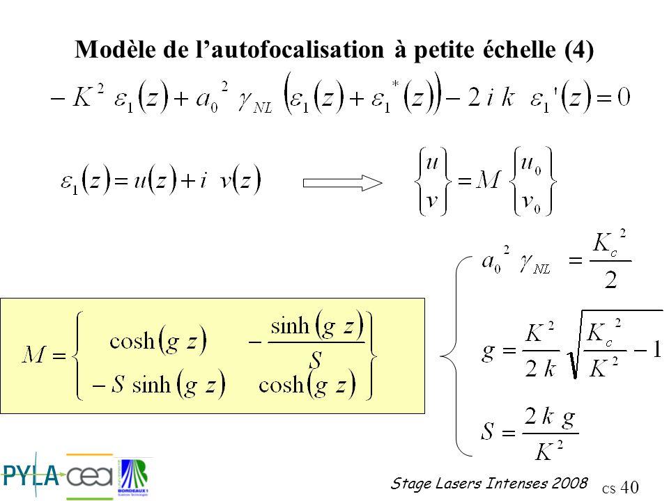 Modèle de l'autofocalisation à petite échelle (4)