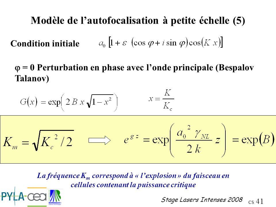 Modèle de l'autofocalisation à petite échelle (5)