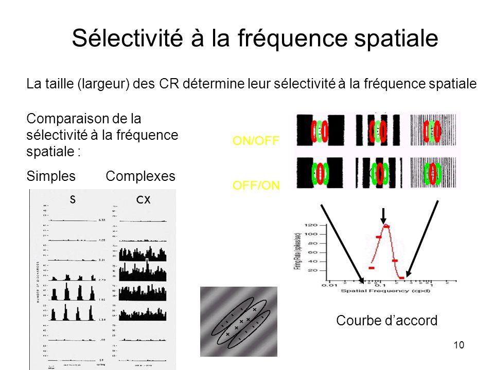 Sélectivité à la fréquence spatiale