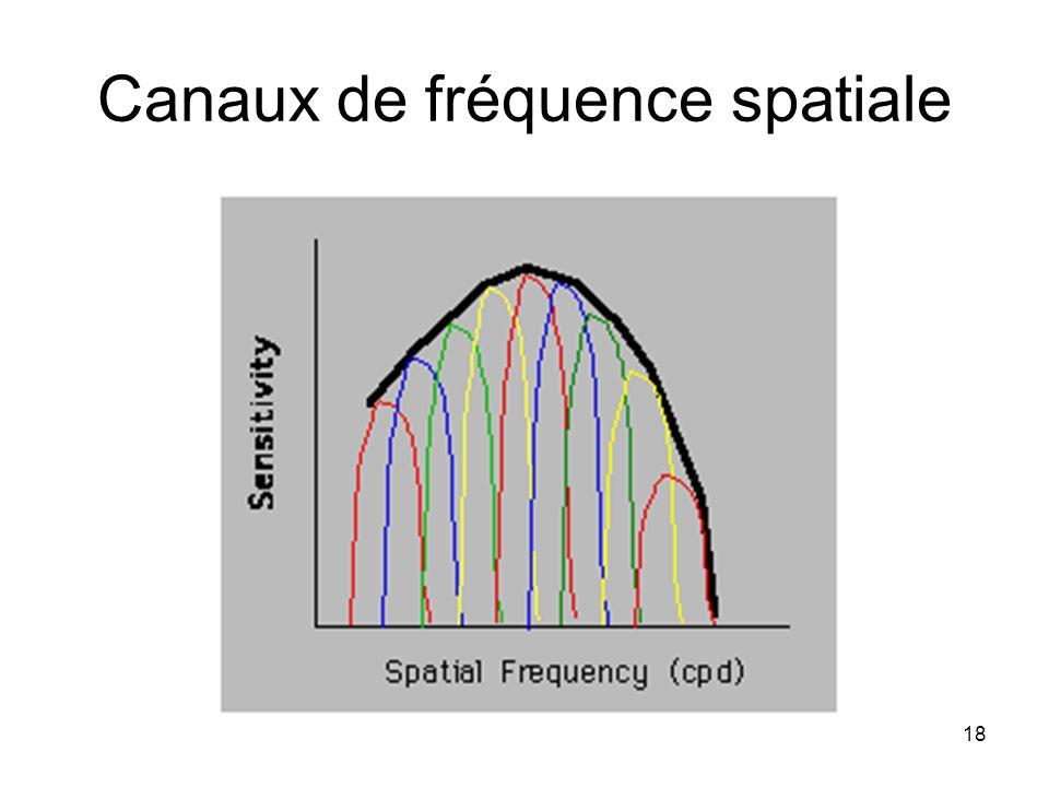 Canaux de fréquence spatiale