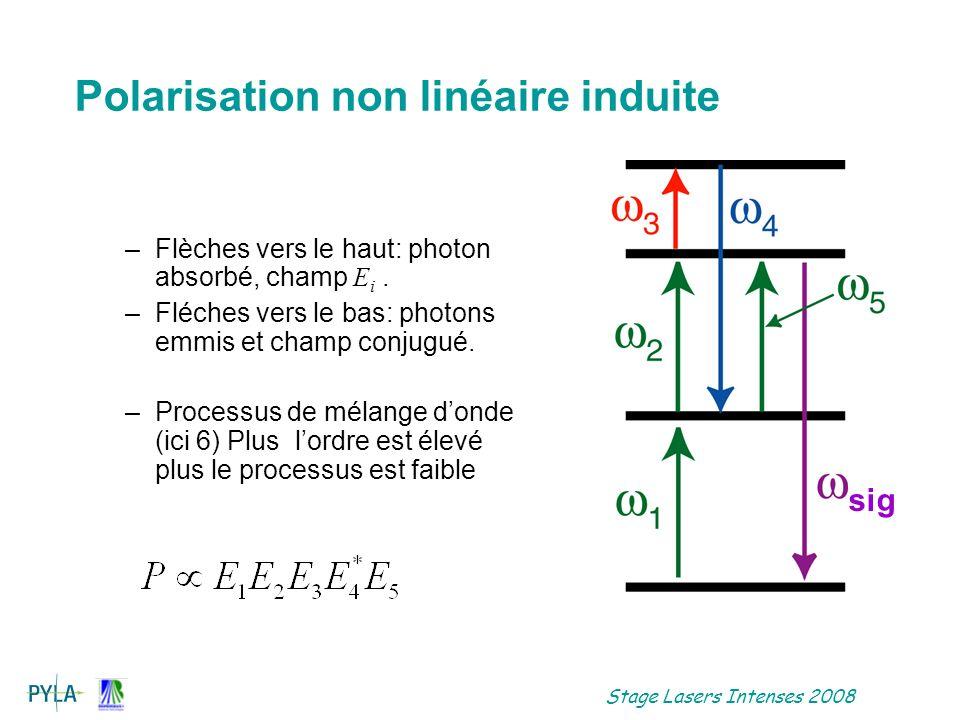 Polarisation non linéaire induite
