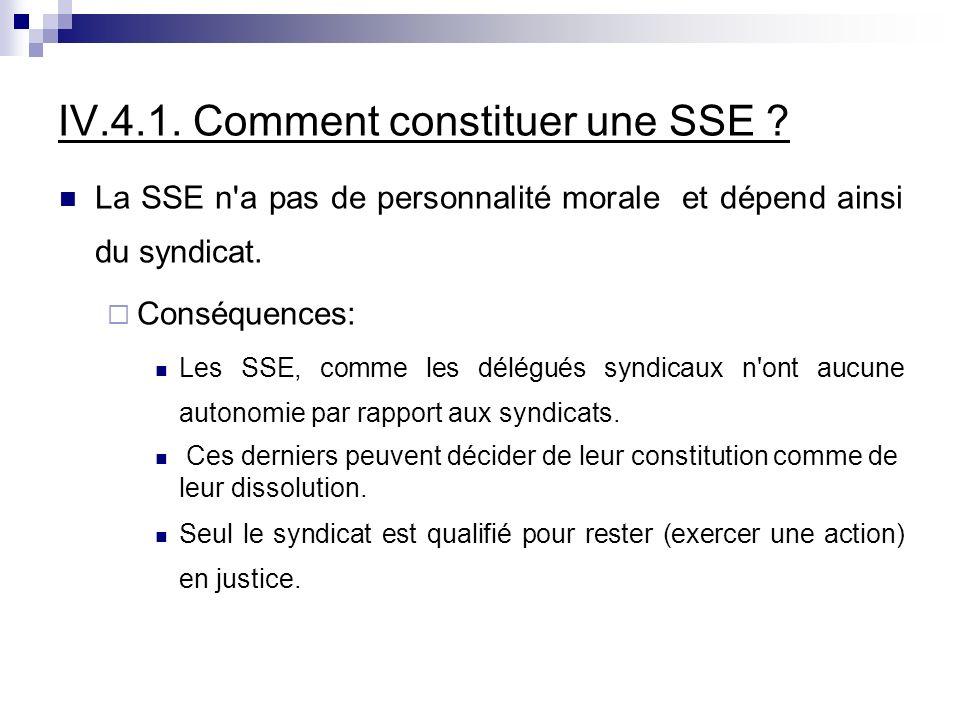 IV.4.1. Comment constituer une SSE