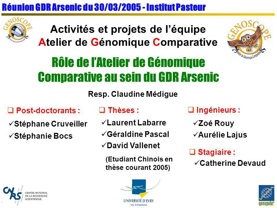 Activités et projets de l'équipe Atelier de Génomique Comparative