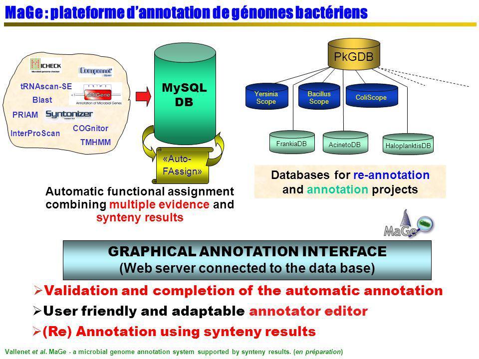 MaGe : plateforme d'annotation de génomes bactériens