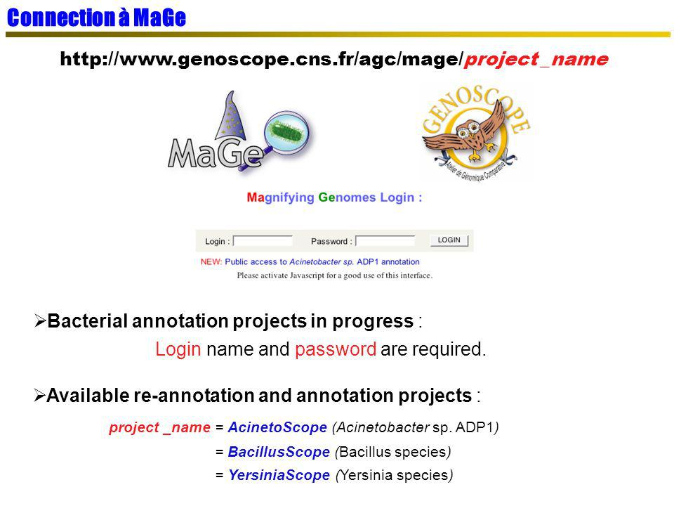 Connection à MaGe http://www.genoscope.cns.fr/agc/mage/project _name