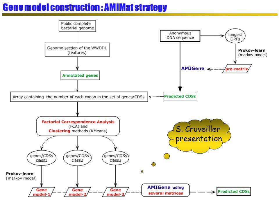 Gene model construction : AMIMat strategy