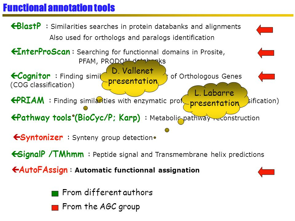 Functional annotation tools