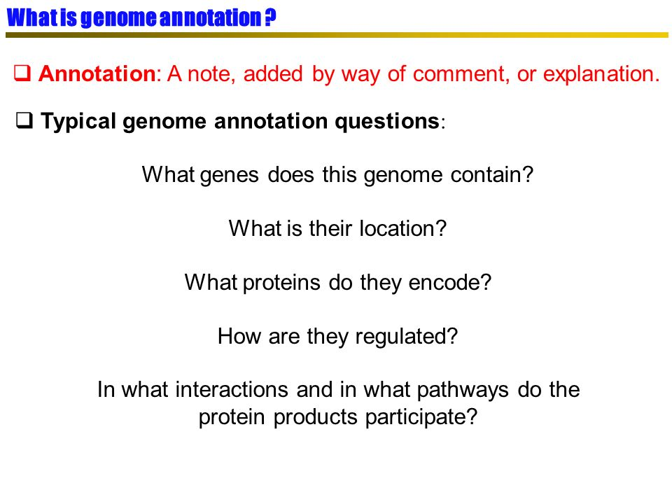 What is genome annotation