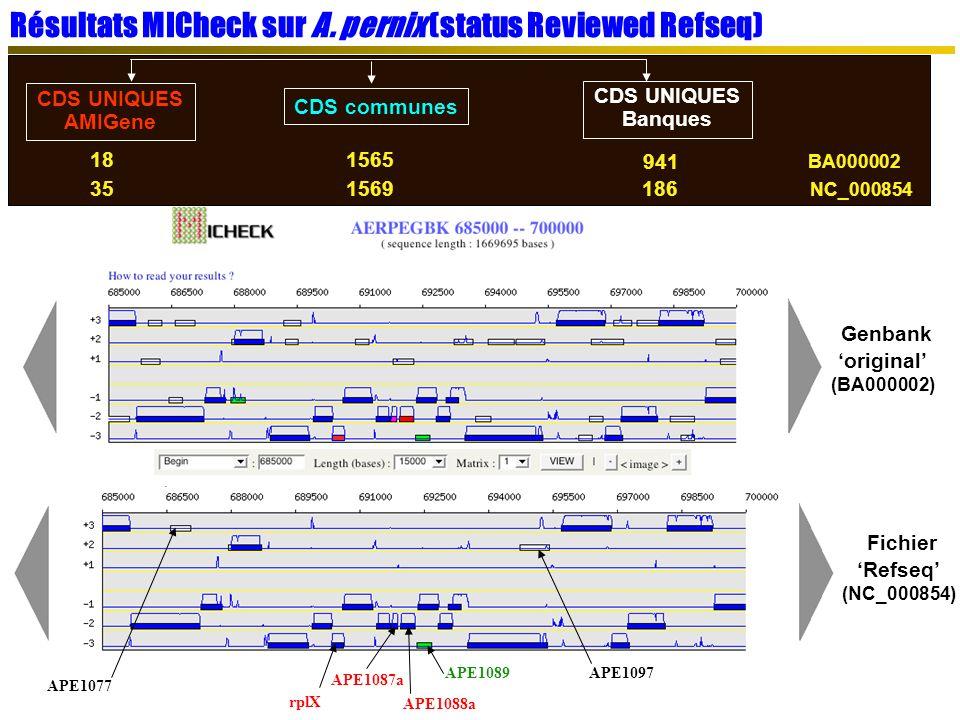 Résultats MICheck sur A. pernix (status Reviewed Refseq)