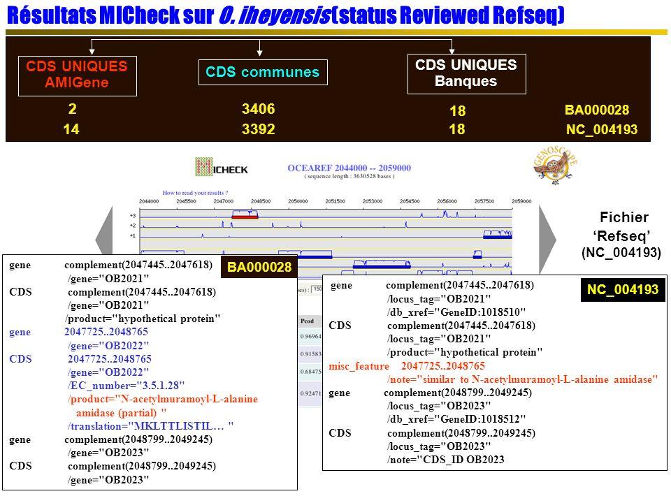 Résultats MICheck sur O. iheyensis (status Reviewed Refseq)