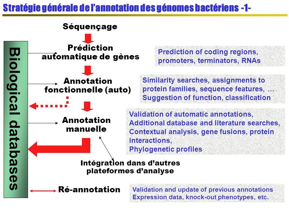 Stratégie générale de l'annotation des génomes bactériens -1-