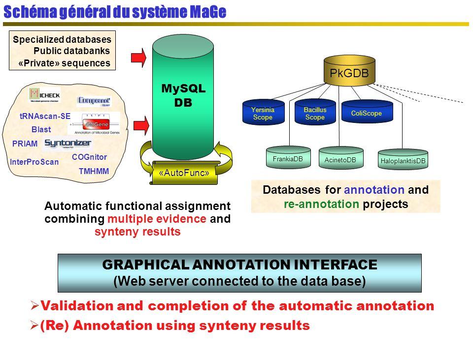 Schéma général du système MaGe