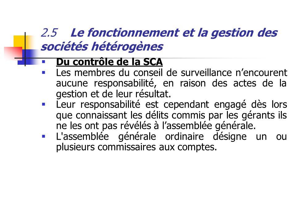 2.5 Le fonctionnement et la gestion des sociétés hétérogènes