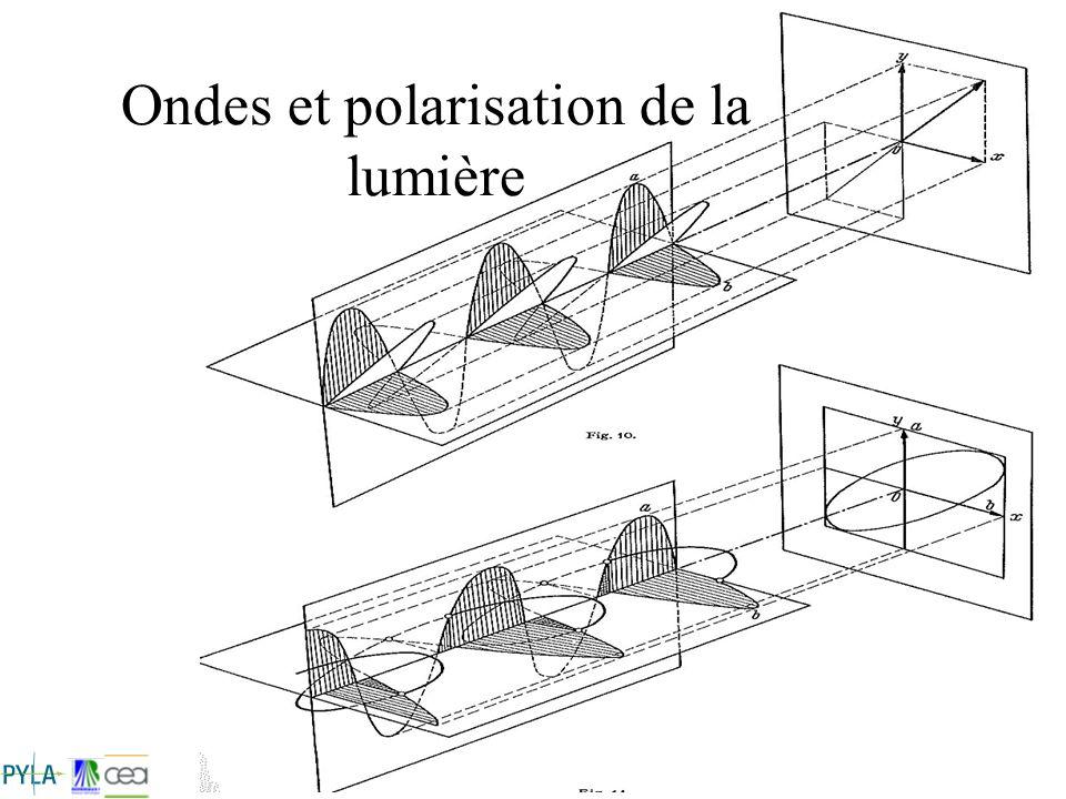Ondes et polarisation de la lumière