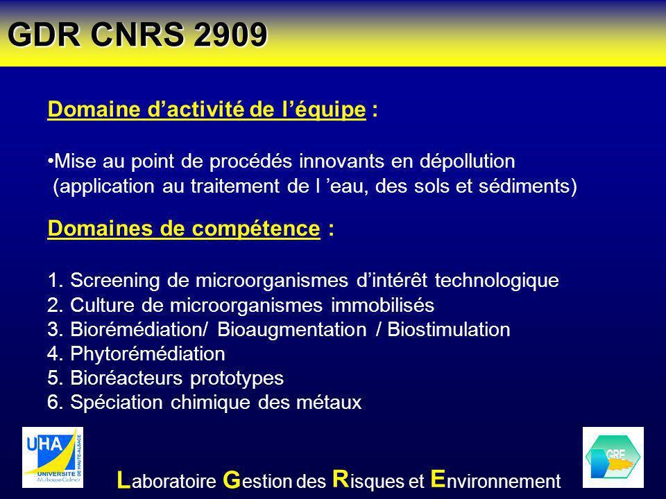 GDR CNRS 2909 L G R E Domaine d'activité de l'équipe :