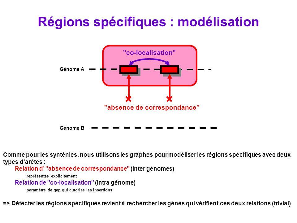 Régions spécifiques : modélisation