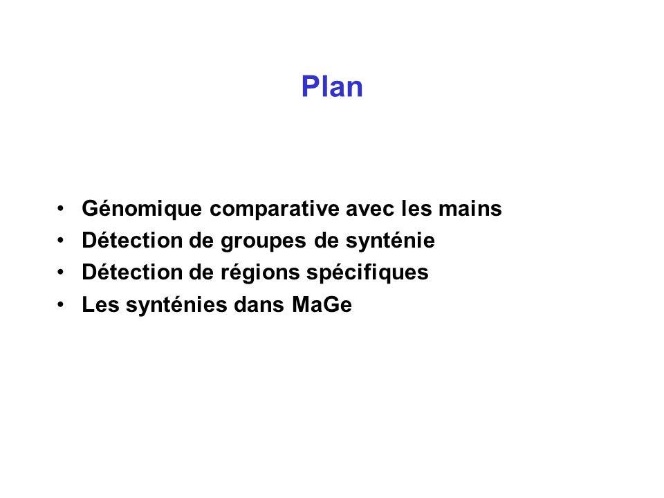 Plan Génomique comparative avec les mains