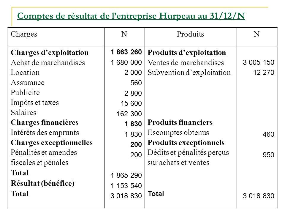 Comptes de résultat de l'entreprise Hurpeau au 31/12/N