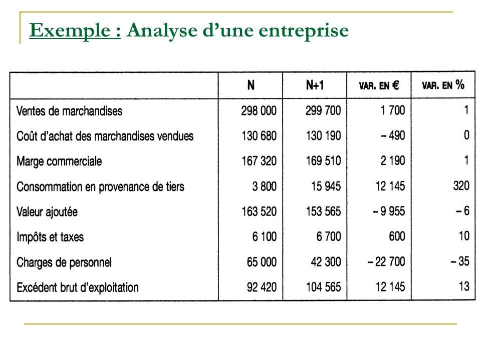 Exemple : Analyse d'une entreprise