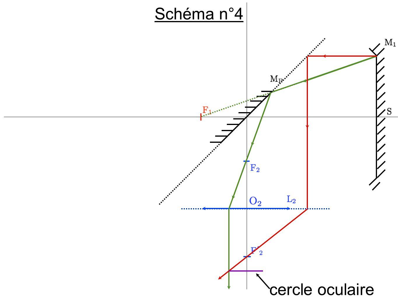 Schéma n°4 cercle oculaire