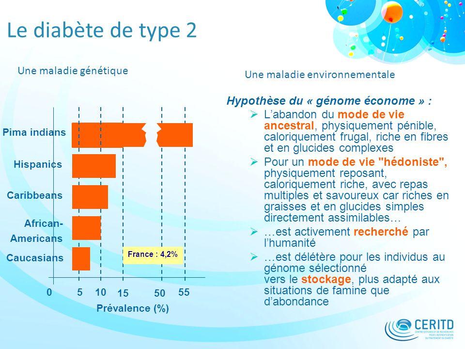 Le diabète de type 2 Une maladie génétique