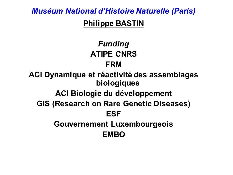 Muséum National d'Histoire Naturelle (Paris) Philippe BASTIN Funding